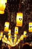 ζωντανός μακρύς βασιλιάδ&omega Στοκ φωτογραφίες με δικαίωμα ελεύθερης χρήσης