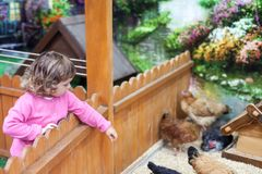 Ζωολογικός κήπος επαφών, wathing ζώα αγροκτημάτων παιδάκι Στοκ φωτογραφία με δικαίωμα ελεύθερης χρήσης