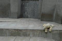 ζωολογικός κήπος ζωής Στοκ εικόνες με δικαίωμα ελεύθερης χρήσης