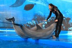 Ζωολογικός κήπος Βαρκελώνη Στοκ εικόνα με δικαίωμα ελεύθερης χρήσης