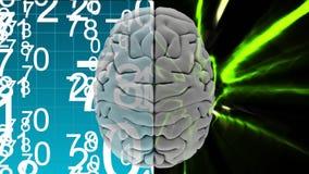 Ζωτικότητα της κορυφής του εγκεφάλου ενάντια δυαδικοί κώδικες και ελαφριά αποτελέσματα διανυσματική απεικόνιση