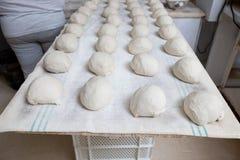 Ζύμη ψωμιού πριν από τη ζύμωση Στοκ εικόνες με δικαίωμα ελεύθερης χρήσης
