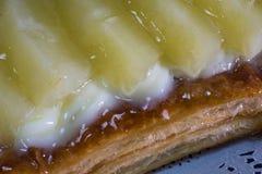 Ζύμη Pineaple στοκ φωτογραφία με δικαίωμα ελεύθερης χρήσης