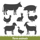 Ζώα αγροκτημάτων ελάχιστα Στοκ Φωτογραφία