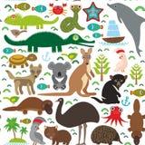 Ζώα Αυστραλία: Τασμανικό dingo καγκουρό κροκοδείλων χελωνών φιδιών Wombat παπαγάλων Cockatoo διαβόλων στρουθοκαμήλων ΟΝΕ Platypus Στοκ Εικόνα