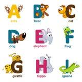 Ζώα αλφάβητου από το Α στο Ι Στοκ Εικόνες