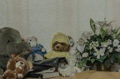 ζώα βελούδου σε ένα σπίτι στοκ φωτογραφία