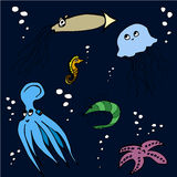 Ζώα θάλασσας Στοκ φωτογραφία με δικαίωμα ελεύθερης χρήσης