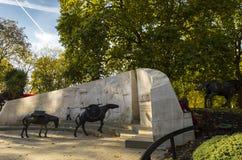Ζώα στο πολεμικό μνημείο, μνημείο που τιμά την μνήμη όλων των ζώων που έχουν εξυπηρετήσει κάτω από το βρετανικό στρατιωτικό πρόστ Στοκ Εικόνες