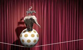 Ζώα τσίρκων Στοκ Εικόνα