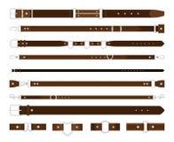 Ζώνες δέρματος καθορισμένες ελεύθερη απεικόνιση δικαιώματος