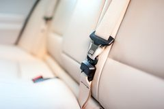 Ζώνη ασφαλείας στο οπίσθιο κάθισμα του σύγχρονου αυτοκινήτου με το μπεζ δέρμα Στοκ Εικόνες