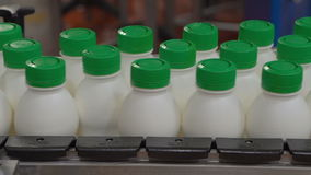 Ζώνη μεταφορέων σε ένα εργοστάσιο γάλακτος με τα μπουκάλια γιαουρτιού φιλμ μικρού μήκους