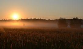 Ζώνη της ομίχλης στον ήλιο Στοκ Εικόνες