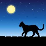 Ζώο γατών στην μπλε απεικόνιση φεγγαριών νύχτας σκιαγραφιών στεγών Στοκ φωτογραφίες με δικαίωμα ελεύθερης χρήσης