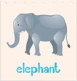 Ζώο wordcard με τον ελέφαντα διανυσματική απεικόνιση