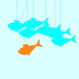 Ηγέτης ψαριών Στοκ εικόνα με δικαίωμα ελεύθερης χρήσης