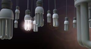 Ηγεσία που κρεμά Lightbulb Στοκ εικόνες με δικαίωμα ελεύθερης χρήσης