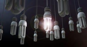 Ηγεσία που κρεμά Lightbulb Στοκ φωτογραφία με δικαίωμα ελεύθερης χρήσης