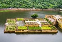 Ηλέκτρινοι κήποι οχυρών στη λίμνη Maota, Jaipur, Ινδία Στοκ εικόνες με δικαίωμα ελεύθερης χρήσης