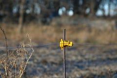 Ηλεκτρικός μετα-μονωτής φρακτών Στοκ Εικόνες