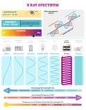 Ηλεκτρομαγνητικά κύματα: Φάσμα κυμάτων ακτίνας X Διανυσματικό διάγραμμα απεικόνισης με το μήκος κύματος, τη συχνότητα, τη βλαπτικ απεικόνιση αποθεμάτων