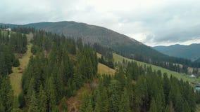 Ηλεκτροφόρο καλώδιο στο δάσος με πολλά κωνοφόρα δέντρα στα βουνά στο νεφελώδη καιρό απόθεμα βίντεο
