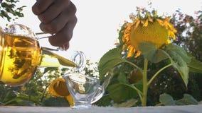 Ηλιέλαιο και ηλίανθοι φιλμ μικρού μήκους