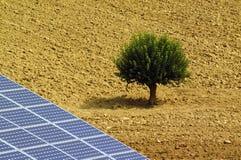Ηλιακοί ιχνηλάτες και ένα δέντρο στον οργωμένο τομέα στοκ εικόνα με δικαίωμα ελεύθερης χρήσης