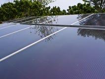 Ηλιακό πλαίσιο στον κήπο Στοκ Εικόνα