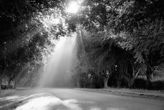 Ηλιαχτίδες γραπτές Στοκ Φωτογραφία