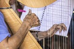 Ηλικίας η άτομο τρίτης ηλικίας γυναίκα που παίζει την άρπα με το ένα που ζαρώνεται παραδίδει τη σαφή εστίαση και άλλες χέρι και μ στοκ εικόνες με δικαίωμα ελεύθερης χρήσης