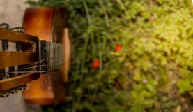 Ηλικίας κιθάρα στη φύση Στοκ εικόνες με δικαίωμα ελεύθερης χρήσης