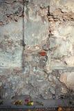 ηλικίας τοίχος ανασκόπησ Στοκ Εικόνα