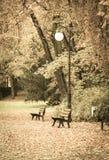 Ηλικίας φωτογραφία, φθινοπωρινό πάρκο με το φωτισμό και πάγκος για τη χαλάρωση Στοκ φωτογραφία με δικαίωμα ελεύθερης χρήσης