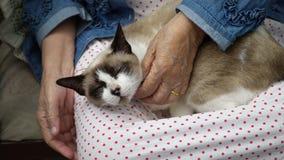 Ηλικιωμένη γυναίκα που κρατά μια γάτα φιλμ μικρού μήκους