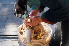 Ηλικιωμένη γυναίκα που ξεφλουδίζει το φρέσκο κοτόπουλο ο παραδοσιακός χειρωνακτικός τρόπος στο αγρόκτημα επαρχίας στοκ φωτογραφίες