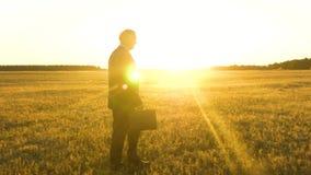 Ηλικιωμένος επιχειρηματίας στο σοβαρό κοστούμι με το μαύρο χαρτοφύλακα που περπατά μέσω του τομέα στις ακτίνες του φωτεινού ήλιου φιλμ μικρού μήκους
