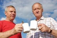 ηλικιωμένο τσάι φύσης ατόμω& Στοκ Εικόνες