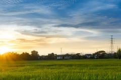 Ηλιοβασίλεμα άποψης τοπίων πόλεων πέρα από τη φυτεία τομέων ρυζιού που καλλιεργεί με το σπίτι και τις τηλεπικοινωνίες Στοκ φωτογραφίες με δικαίωμα ελεύθερης χρήσης