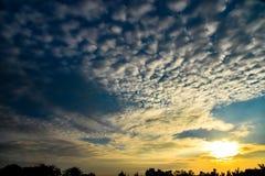 Ηλιοβασίλεμα ή ανατολή πέρα από το δασικό τοπίο Ηλιοφάνεια ήλιων με Natur στοκ εικόνες