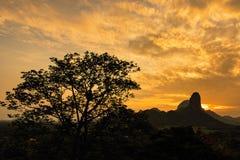 Ηλιοβασίλεμα βουνών με το σκιαγραφημένο δέντρο πεύκων Ταϊλάνδη Στοκ εικόνα με δικαίωμα ελεύθερης χρήσης