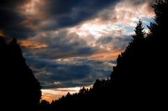 Ηλιοβασίλεμα βραδιού με τη σκιαγραφία των κορυφών δασών και δέντρων Φω'τα και πυράκτωση της Νίκαιας σύννεφα μικρά στοκ εικόνες