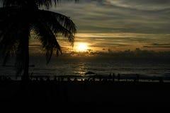 Ηλιοβασίλεμα εν πλω big palm tee Seascape στοκ φωτογραφία με δικαίωμα ελεύθερης χρήσης
