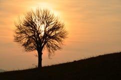 ηλιοβασίλεμα επαρχίας στοκ εικόνες