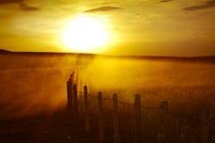 Ηλιοβασίλεμα ερήμων του Κατάρ Στοκ Εικόνες