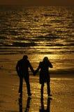 ηλιοβασίλεμα εραστών κάτ Στοκ φωτογραφία με δικαίωμα ελεύθερης χρήσης