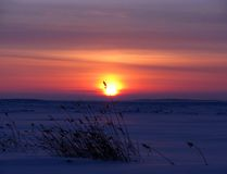 Ηλιοβασίλεμα και άσπρη θάλασσα το χειμώνα (Ρωσία) Στοκ Φωτογραφίες