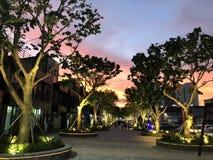 Ηλιοβασίλεμα και δέντρα στοκ εικόνα με δικαίωμα ελεύθερης χρήσης