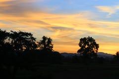 Ηλιοβασίλεμα και ελαφρύς δίκαιος ήλιος ζωηρόχρωμο σε όμορφο ουρανού και σύννεφων με το δέντρο σκιαγραφιών στη δασώδη περιοχή στοκ εικόνες